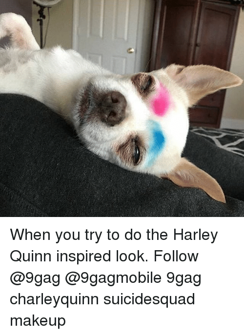 9gag, Memes, and Harley: When you try to do the Harley Quinn inspired look. Follow @9gag @9gagmobile 9gag charleyquinn suicidesquad makeup