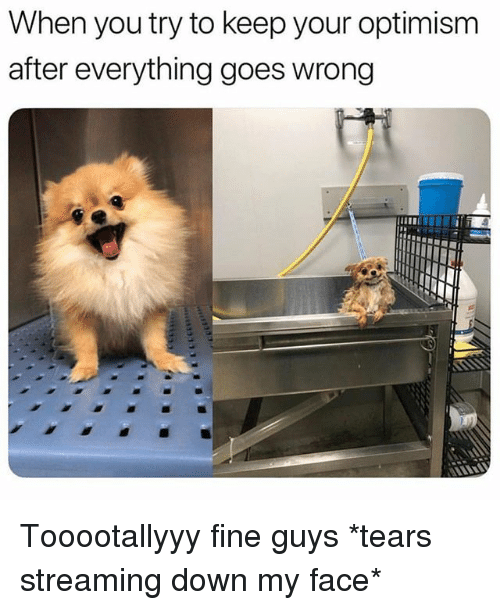 Girl Memes, Optimism, and Down: When you try to keep your optimism  after everything goes wrong Tooootallyyy fine guys *tears streaming down my face*