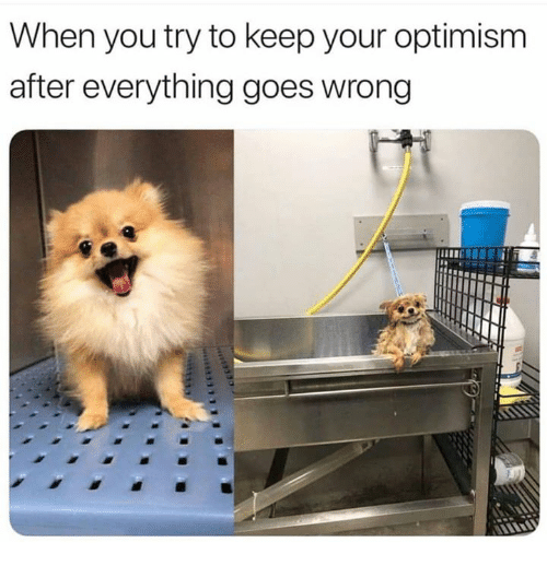 Humans of Tumblr, Optimism, and You: When you try to keep your optimism  after everything goes wrong