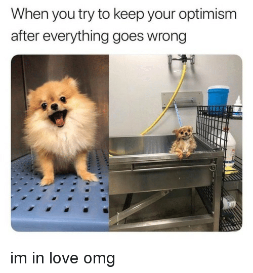 Love, Omg, and Optimism: When you try to keep your optimism  after everything goes wrong im in love omg