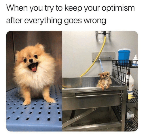 Optimism, You, and When You: When you try to keep your optimism  after everything goes wrong