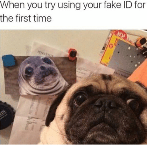 First Your You Id Meme On Dank me Using The Me For Try Fake When Time