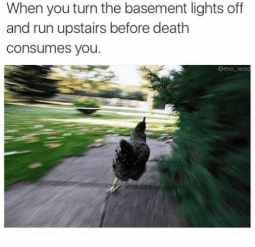 Run, Death, and Lights: When you turn the basement lights off  and run upstairs before death  consumes you.  mowac