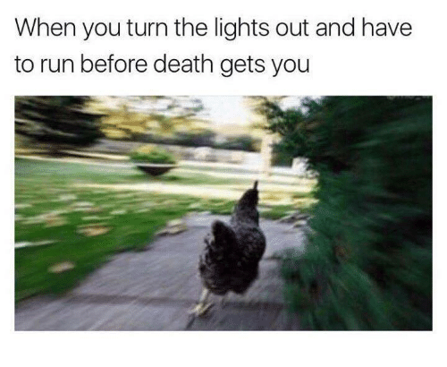When You Turn the Lights Out and Have to Run Before Death Gets You