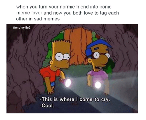 when you turn your normie friend into ironic meme lover 4792951 when you turn your normie friend into ironic meme lover and now,Meme Lover