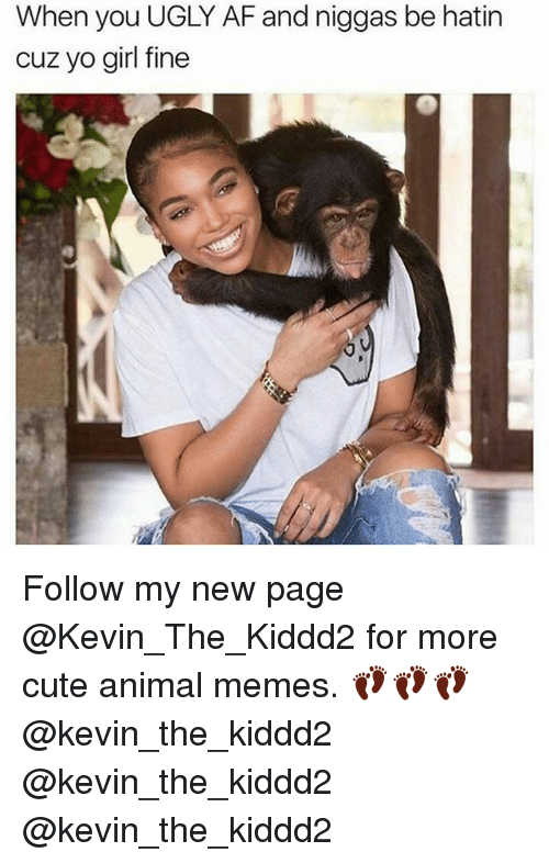 Af, Cute, and Memes: When you UGLY AF and niggas be hatin  cuz yo girl fine Follow my new page @Kevin_The_Kiddd2 for more cute animal memes. 👣👣👣@kevin_the_kiddd2 @kevin_the_kiddd2 @kevin_the_kiddd2