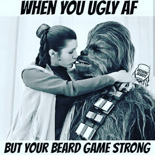 When You Ugly Af But Your Beard Game Strong Beard Meme On Me Me