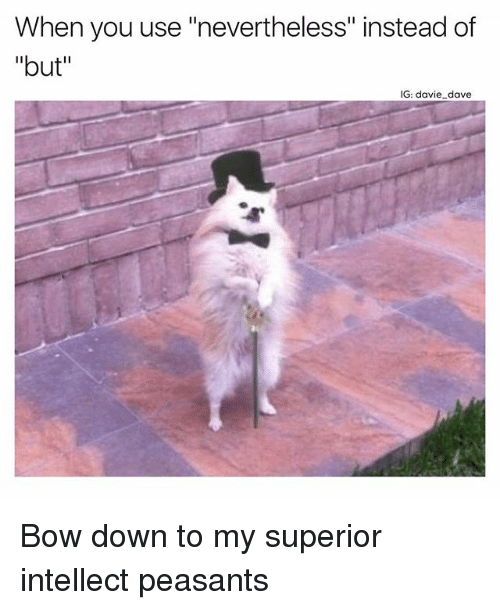 """Funny, Superior, and Down: When you use """"nevertheless"""" instead of  """"but""""  IG: davie dave Bow down to my superior intellect peasants"""