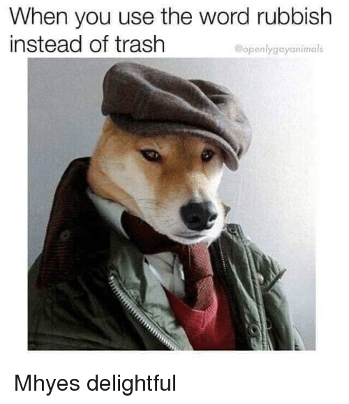 Trash, Word, and You: When you use the word rubbish  instead of trash  @openlygayanimals Mhyes delightful