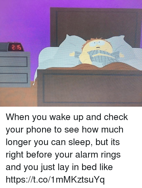 Funny, Phone, and Alarm: When you wake up and check your phone to see how much longer you can sleep, but its right before your alarm rings and you just lay in bed like https://t.co/1mMKztsuYq