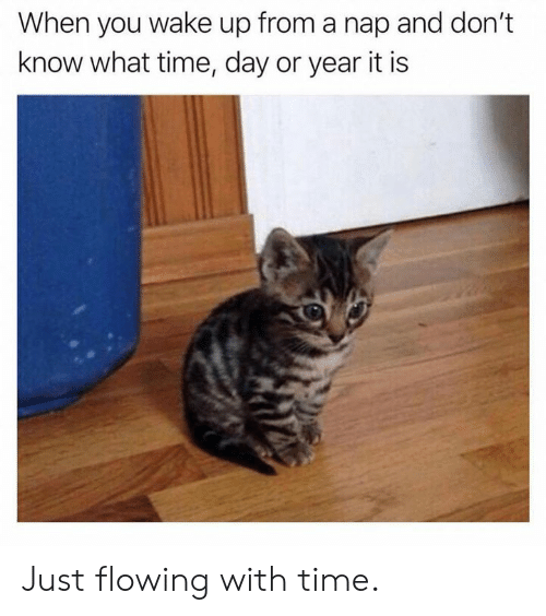 Dank, Time, and 🤖: When you wake up from a nap and don't  know what time, day or year it is Just flowing with time.