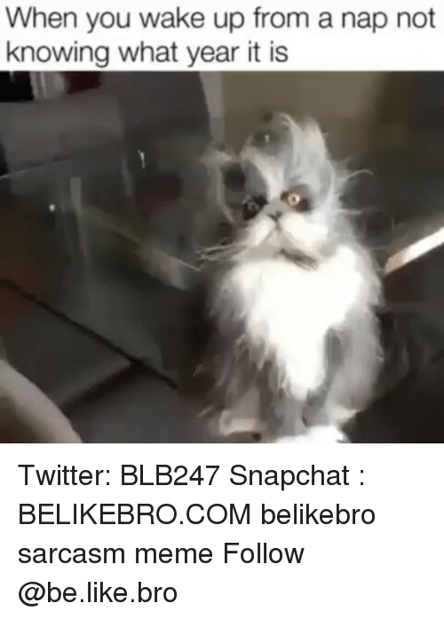 Be Like, Meme, and Memes: When you wake up from a nap not  knowing what year it is Twitter: BLB247 Snapchat : BELIKEBRO.COM belikebro sarcasm meme Follow @be.like.bro