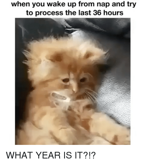 Girl Memes, Wake, and You: when you wake up from nap and try  to process the last 36 hours WHAT YEAR IS IT?!?