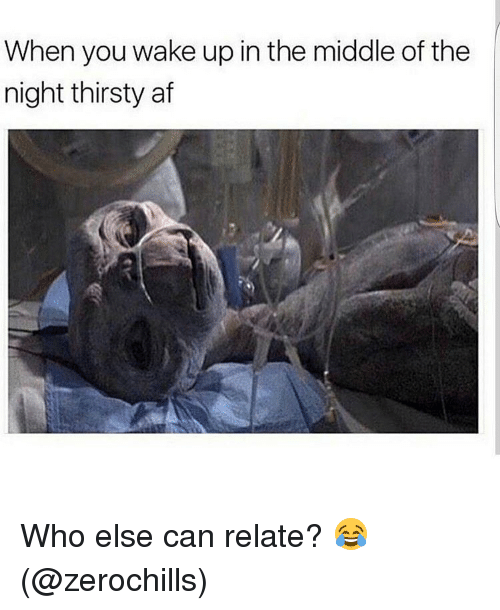 Memes, 🤖, and Afs: When you wake up in the middle of the  night thirsty af Who else can relate? 😂 (@zerochills)