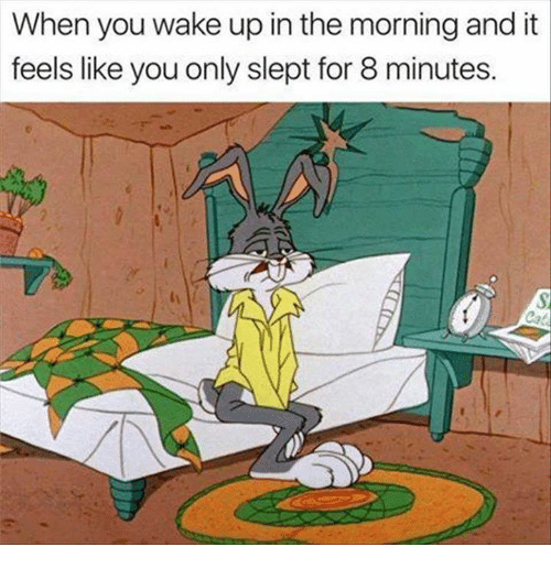 Memes, 🤖, and Wake: When you wake up in the morning and it  feels like you only slept for 8 minutes.