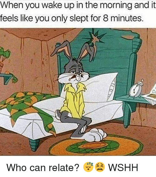 Memes, Wshh, and 🤖: When you wake up in the morning and it  feels like you only slept for 8 minutes. Who can relate? 😴😫 WSHH