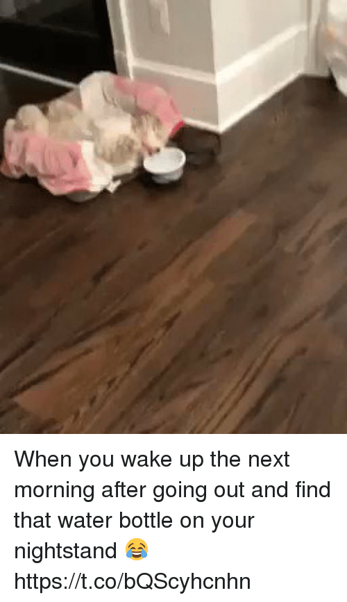 Water, Girl Memes, and Next: When you wake up the next morning after going out and find that water bottle on your nightstand 😂 https://t.co/bQScyhcnhn