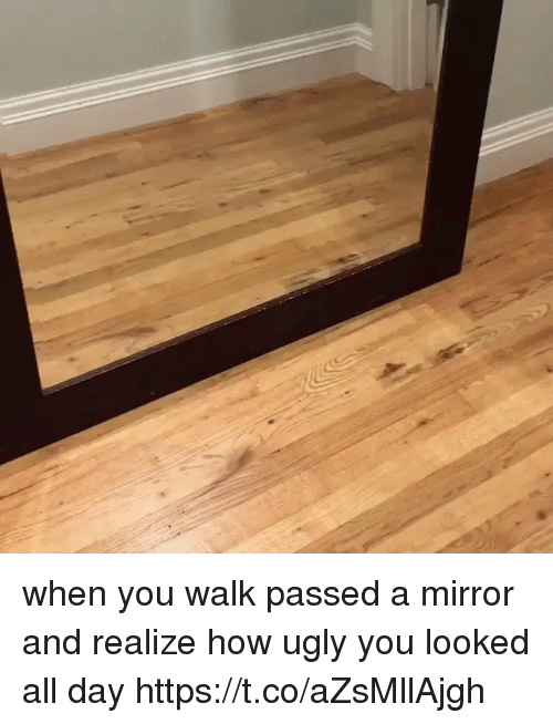 Ugly, Mirror, and Girl Memes: when you walk passed a mirror and realize how ugly you looked all day https://t.co/aZsMllAjgh