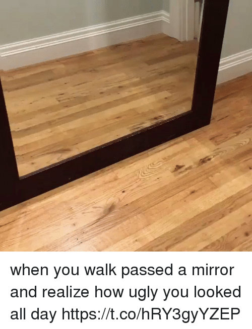 Ugly, Mirror, and Girl Memes: when you walk passed a mirror and realize how ugly you looked all day https://t.co/hRY3gyYZEP