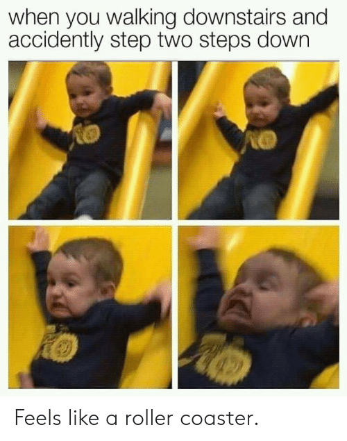 Step, Down, and Roller Coaster: when you walking downstairs and  accidently step two steps down Feels like a roller coaster.