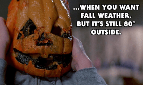 when you want fall weather ibut its still 60 outside 3995018 ✅ 25 best memes about fall weather fall weather memes