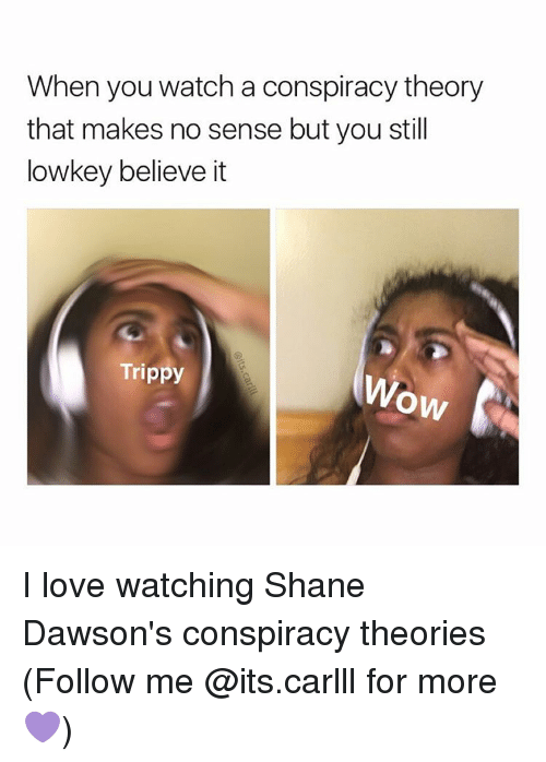 Love, Memes, and Watch: When you watch a conspiracy theory  that makes no sense but you still  lowkey believe it  Trippy  OW I love watching Shane Dawson's conspiracy theories (Follow me @its.carlll for more💜)