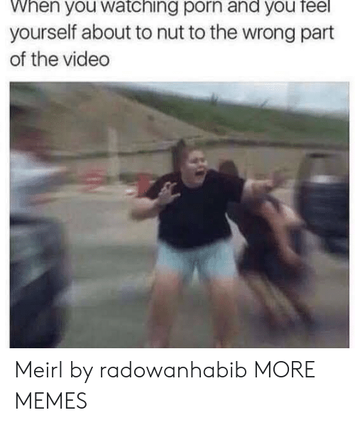 Dank, Memes, and Target: When you watching porn and you feel  yourself about to nut to the wrong part  of the video Meirl by radowanhabib MORE MEMES