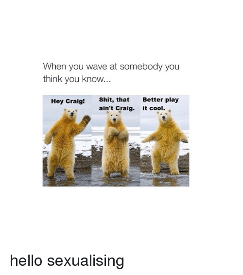 when you wave at somebody you think you know hey 397771 ✅ 25 best memes about hey craig polar bear hey craig polar