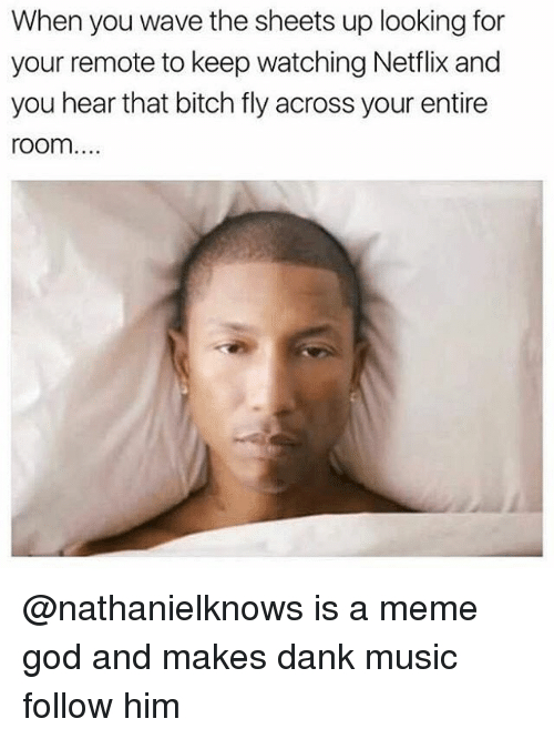 Bitch, Dank, and God: When you wave the sheets up looking for  your remote to keep watching Netflix and  you hear that bitch fly across your entire  room... @nathanielknows is a meme god and makes dank music follow him