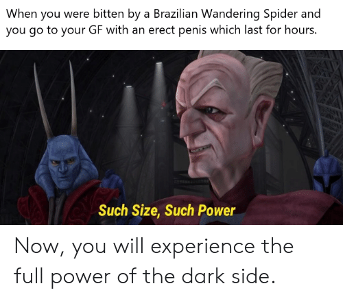Spider, Penis, and Power: When you were bitten by a Brazilian Wandering Spider and  you go to your GF with an erect penis which last for hours.  Such Size, Such Power Now, you will experience the full power of the dark side.