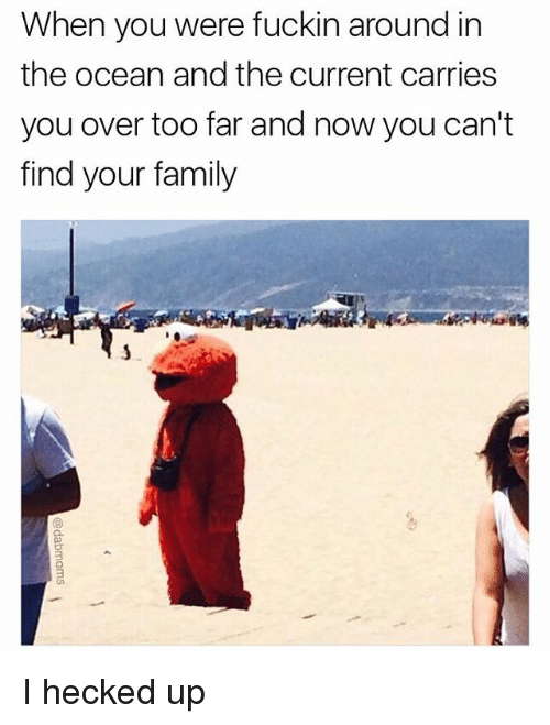 Family, Memes, and Ocean: When you  were fuckin around in  the ocean and the current carries  you over too far and now you can't  find your family I hecked up