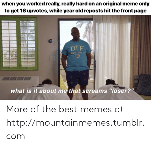 """Dtf, Meme, and Memes: when you worked really, really hard on an original meme only  to get 16 upvotes, while year old reposts hit the front page  DTF  cowN FIEST  what is it about me that screams """"loser?"""" More of the best memes at http://mountainmemes.tumblr.com"""