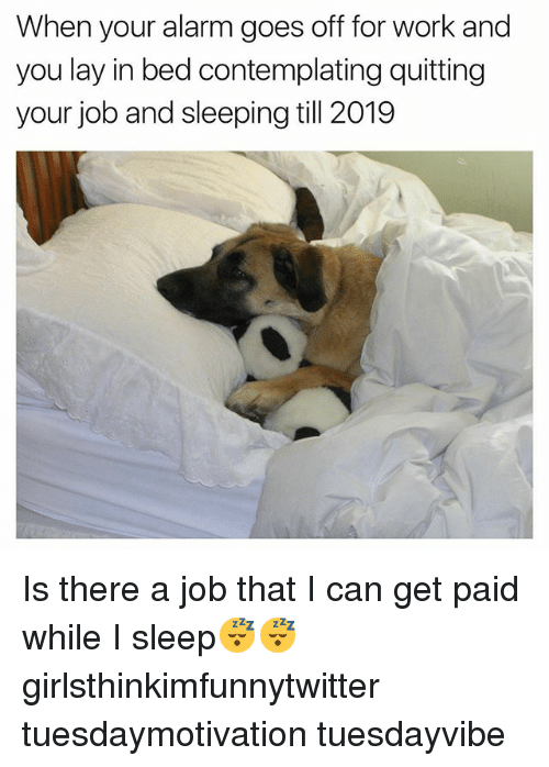 Funny, Work, and Alarm: When your alarm goes off for work and  you lay in bed contemplating quitting  your job and sleeping till 2019 Is there a job that I can get paid while I sleep😴😴 girlsthinkimfunnytwitter tuesdaymotivation tuesdayvibe