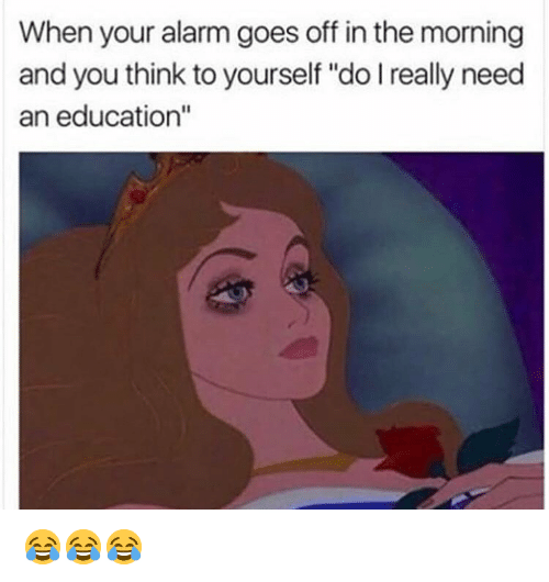 """Funny, Alarm, and An Education: When your alarm goes off in the morning  and you think to yourself """"do I really need  an education"""" 😂😂😂"""