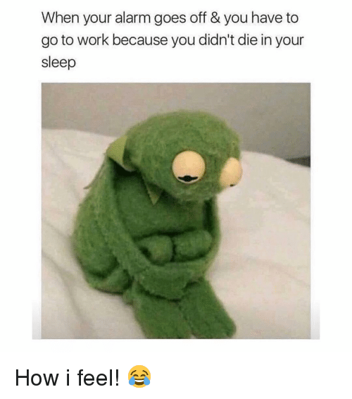 Memes, Work, and Alarm: When your alarm goes off & you have to  go to work because you didn't die in your  sleep How i feel! 😂
