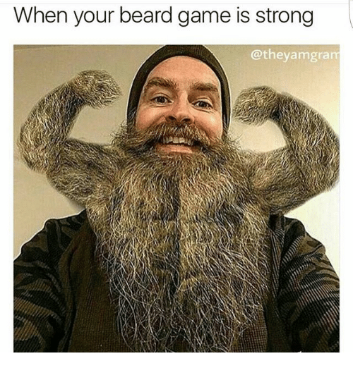 When Your Beard Game Is Strong Amgram Meme On Me Me
