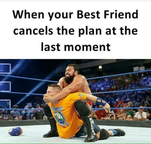 Best Friend, Memes, and Best: When your Best Friend  cancels the plan at the  last moment