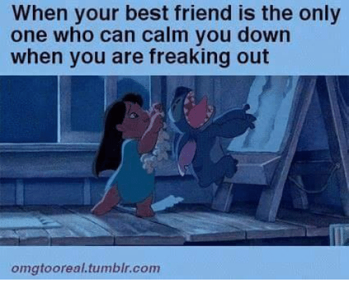 Best Friend, Memes, and Tumblr: When your best friend is the only  one who can calm you down  when you are freaking out  omgtooreal.tumblr.com