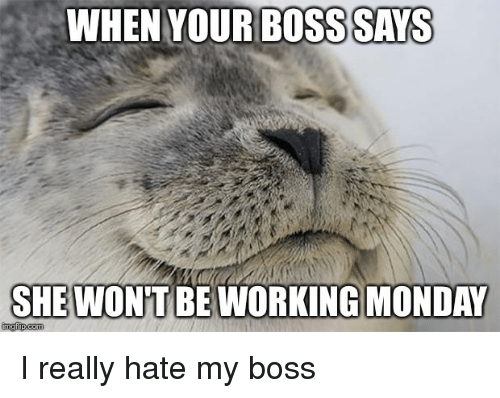 Funny Hate My Boss Meme : Best memes about i hate my boss