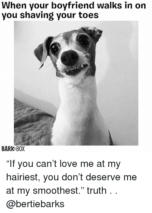 """Love, Memes, and Boyfriend: When your boyfriend walks in on  you shaving your toes  BARK BOX """"If you can't love me at my hairiest, you don't deserve me at my smoothest."""" truth . . @bertiebarks"""