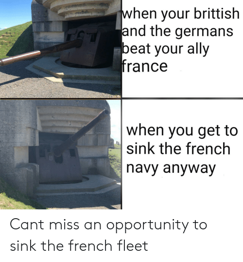 Ally, France, and History: when your brittish  and the germans  beat your ally  france  when you get to  sink the french  navy anyway Cant miss an opportunity to sink the french fleet