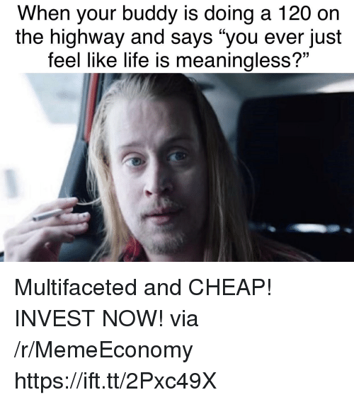 """Life, Invest, and Via: When your buddy is doing a 120 on  the highway and says """"you ever just  feel like life is meaningless?"""" Multifaceted and CHEAP! INVEST NOW! via /r/MemeEconomy https://ift.tt/2Pxc49X"""