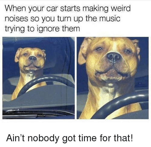 Dank, Music, and Turn Up: When your car starts making weird  noises so you turn up the music  trying to ignore thenm Ain't nobody got time for that!