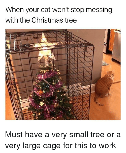 Christmas, Funny, and Work: When your cat won't stop messing  with the Christmas tree Must have a very small tree or a very large cage for this to work