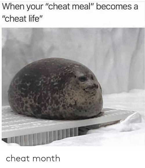 """Dank, Life, and 🤖: When your """"cheat meal"""" becomes a  """"cheat life"""" cheat month"""