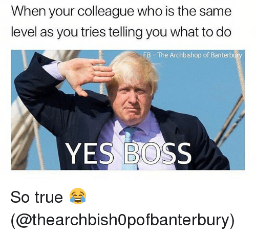 Memes, True, and 🤖: When your colleague who is the same  level as you tries telling you what to do  FB The Archbishop of Banterb  YES BOSS So true 😂 (@thearchbish0pofbanterbury)