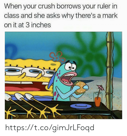 Crush, Ruler, and Asks: When your crush borrows your ruler in  class and she asks why there's a mark  on it at 3 inches https://t.co/gimJrLFoqd