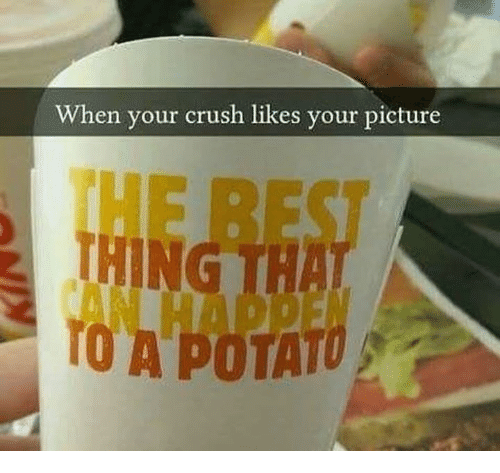 Crush, Picture, and Thing: When your crush likes your picture  THING  TO A POTATU