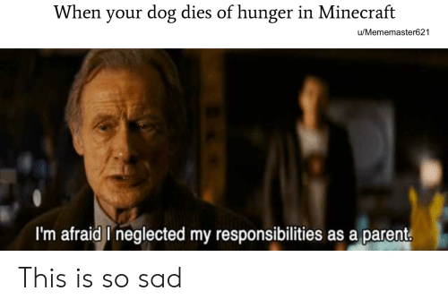 Minecraft, Dank Memes, and Sad: When your dog dies of hunger in Minecraft  u/Mememaster621  I'm afraid I neglected my responsibilities as a parent. This is so sad