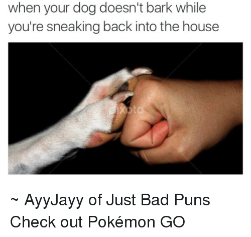 Bad, Dogs, and Memes: when your dog doesn't bark while  you're sneaking back into the house ~ AyyJayy of Just Bad Puns  Check out Pokémon GO